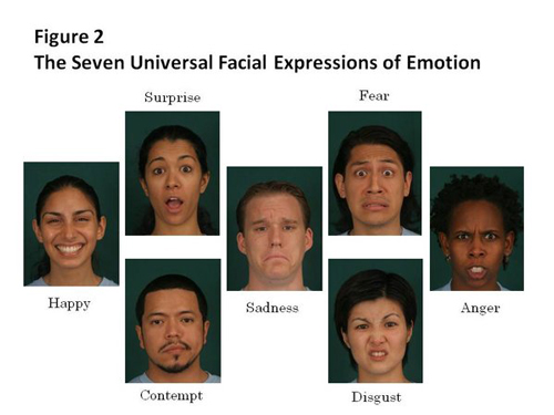 7-universal-facial-expression